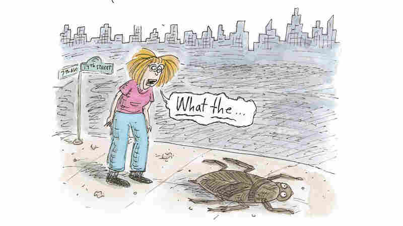 Cartoonist Roz Chast Draws A 'Love Letter' To New York City, Cockroaches And All