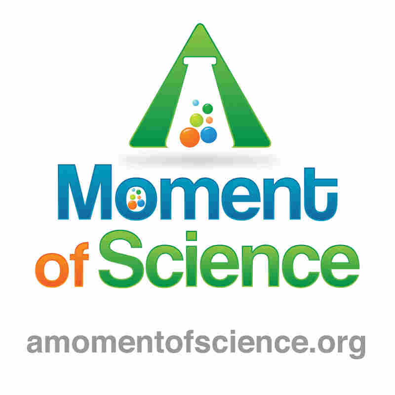 WFIU: A Moment of Science